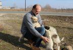 Rolf Kaise, alături de câini fără stăpân