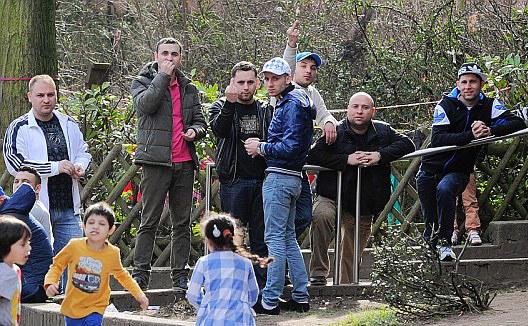 Cetățeni români crează haos în Germania
