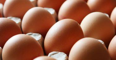 eggs_de