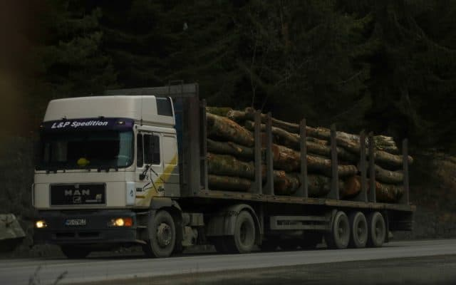 scoaterea din țară a masei lemnoase