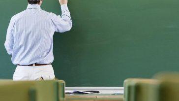 profesor limba germana romania
