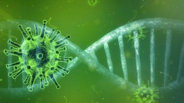 Subvarianta mai contagioasă a mutației Delta, detectată în mai multe țări